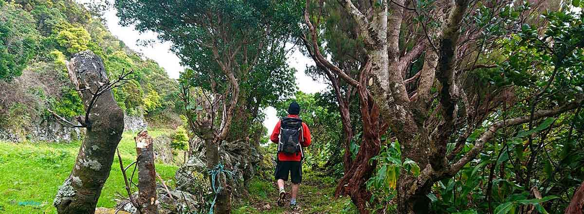 Walking Trail the Mountain to the Sea in São Jorge Island in Azores